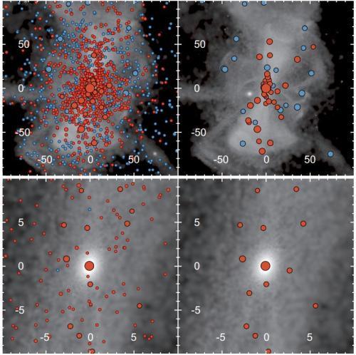 Resultados de las simulaciones proyectadas sobre imágenes del halo galáctico. En el lado izquierdo remanentes población III, en el derecho colapsos directos de progenitores. En azul la remanente sobrevive al proceso, en rojo los colapsos hacia agujeros negros