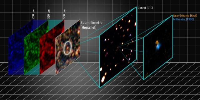 A la izquierda,  varios recuadros muestran una porción de lo observado en las tres bandas del instrumento SPIRE de Herschel. La mancha roja del interior del círculo es HFLS3. En el centro, otro recuadro muestra la imagen en rango visible obtenida con el GTC. A la derecha se representa la emisión de las estrellas en HFLS3 y en una galaxia cercana  en el infrarrojo cercano (en naranja), observada con el telescopio Keck  y la emisión del polvo frío y gas (en azul) en ondas milimétricas observada con el interferómetro PdBI de IRAM. Crédito: ESA/Herschel/HerMES/IRAM/IAC/GTC/W.M. Keck Observatory